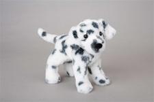 Douglas 8 inch stuffed animal Dooley Dalmatian