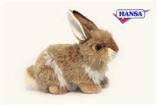 """10"""" Hansa Rabbit"""