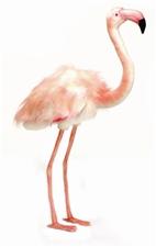 "34"" Hansa Flamingo Xlarge"