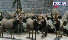 "60"" Hansa Reindeer Extra Large (Sold Separately)"