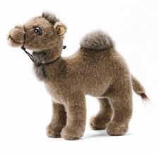 "10"" Hansa Camel Young"