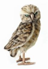 "14"" Hansa Owl"