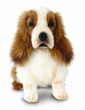 Hansa Cocker Spaniel Pup