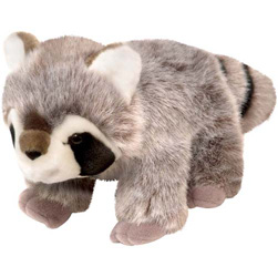 "Wild Republic Cuddlekins Baby Raccoon 8"" (discontinued)"