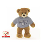 Plushland North Carolina Sweater Bear