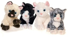 "Plushland 8"" Supersoft Kittens"