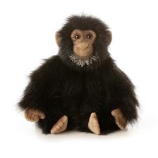 "Aurora 12"" Chuma Monkey"