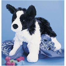 DO1714 2T Douglas 9 Kohair Shep Border Collie Dog
