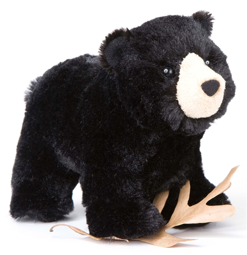 Douglas 8 Quot Morley Black Bear