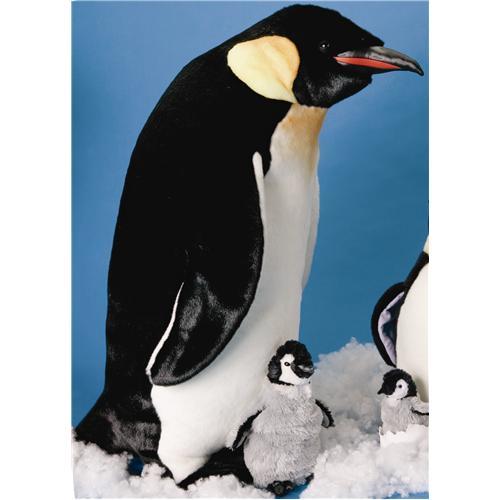 Douglas 33 Quot Orville Penguin
