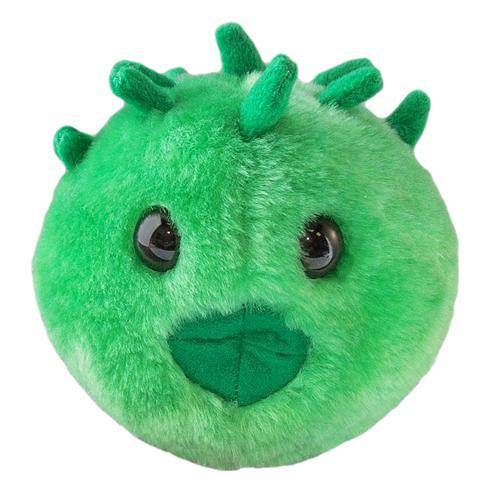 Giant Microbes Chlamydia Microbe