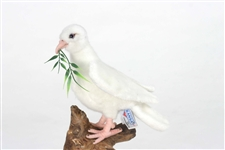 "8"" Hansa Dove White"