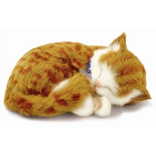 Perfect Petzzz Orange Tabby Cat