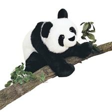Douglas-15-Long-Floppy-Mai-Ling-Panda