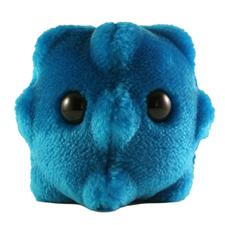 Giant-Microbes-CommonCold-Microbe