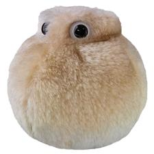 Giant-Microbes-Fat-Cell-Microbe