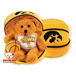 Plushland Iowa Basketball