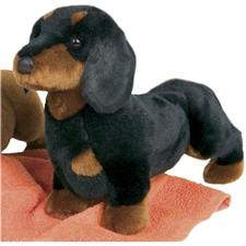 "Douglas 14"" Spats Black & Tan Dachshund Dog"