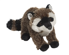 "Douglas 16"" Tracker Raccoon"