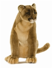 "11"" Hansa Mountain Lion'"