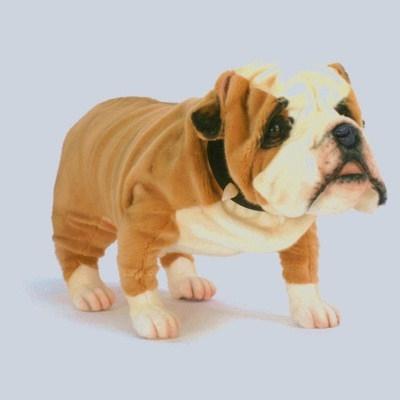 30 Hansa Bulldog British