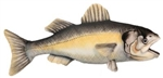"14"" Hansa Sea Bass"