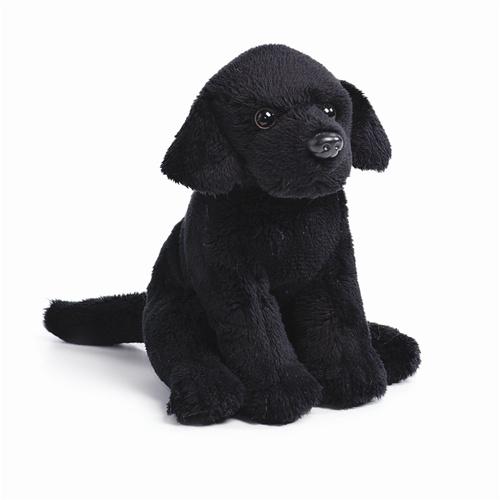 5 5 Nat Jules Black Lab Dog